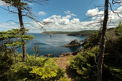 Ocean View (Karen_Chappell) Tags: ocean scenic scenery newfoundland nfld eastcoast eastcoasttrail canada capespear trees blue green hills clouds sky seascape atlantic atlanticcanada water sea coast coastline peggysbay canonefs1022mm wideangle