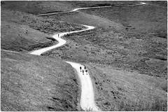 Lessinia (Roberto Spagnoli) Tags: lessinia mountain montagna sentiero path strada road biancoenero blackandwhite camminare walking trekking