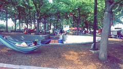Hammocks at Spruce Street Harbor Park during DNC 2016 (Philadelphia 2016 Host Committee) Tags: hammock spruce street harbor park dnc 2016