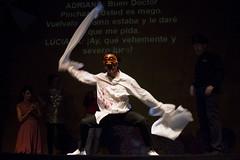 MX TV LA COMEDIA DE LOS ERRORES (Fotogaleria oficial) Tags: comedia errores titeria shakespeare