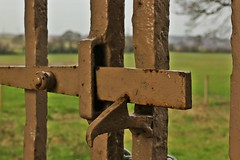 216 of 366 (I line photography) Tags: 365project gate irongates fence metal fields trees latch