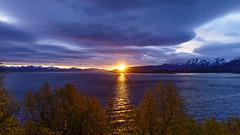 midnight sunset at the Lofoten (Urs Walesch) Tags: lofoten sunset midnightsun panorama e10 clouds ocean colours mountains landscape