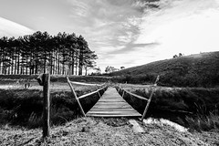 Bridge over Cold Waters (marccrowther) Tags: nikon nikond7100 d7100 1024mmf3545g nikon1024mmf3545 drakensberg kamberg glengarry blackandwhite ultrawide ultrawideangle bridge woodenbridge landscape