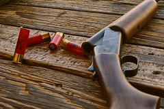DSC02005 (Welshmenphotos) Tags: guns rifles shotgun range gun trap shooting fun safety safe sony sonya6000 fine art photography photographer photos florida portrait landscape stilllife