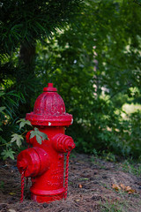 My_Fire_Hydrant (c_live_lee) Tags: fire hydrant plug