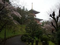 Naritasan Shinsh-ji (Toni Kaarttinen) Tags: japan  japonia    jap japonsko jaapan  japani japon xapn    japn jepang an tseapin giappone  japna japonija  japo  japonska japn hapon  japonya nht bn japanese narita naritacity naritatown naritasan shinshji naritasanshinshji pagoda park calm tranquillity
