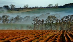 IMG_8675 (Leroy Wilson) Tags: clouds perthshire ploughedfield temperatureinversion