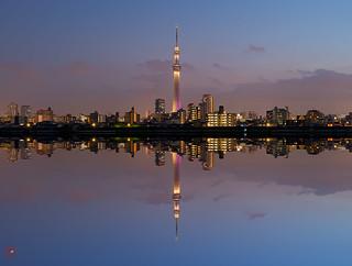 Sky Tree Reflections