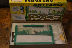 "ORIGINAL ANT FARM, COMPLETE WITH ANT COUPON. • <a style=""font-size:0.8em;"" href=""http://www.flickr.com/photos/51721355@N02/17922284436/"" target=""_blank"">View on Flickr</a>"