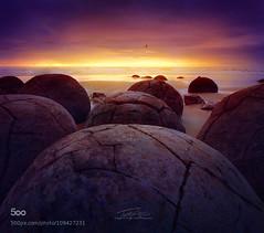 Moeraki Boulders (muriloals) Tags: new newzealand sunlight boulders zealand nz moeraki tarik  alturki  500px    ifttt tarikalturki