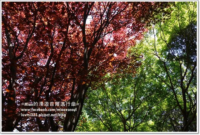 벽초지문화수목원08