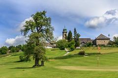 Der Golfplatz (Fotos4RR) Tags: tree golf austria sterreich baum obersterreich golfplatz upperaustria mhlviertel pfarrkirchen pfarrkirchenimmhlkreis
