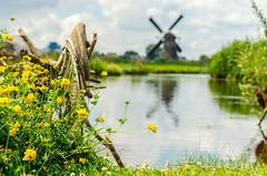 20160717-20160717_Kinderdijk_1301.jpg (HansvdL) Tags: kinderdijk arlene molens