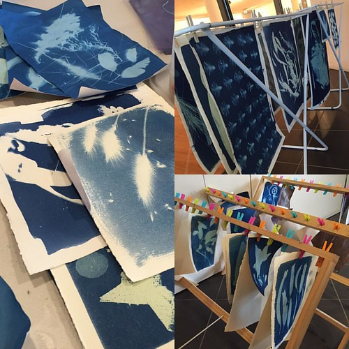#cyanotype results drying. Our instructor @jamestfarley should be proud.