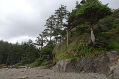 (BetsyAmes) Tags: oregoncoast shortsands beachgetaway
