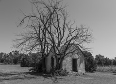 Surrounded_BW (Kool Cats Photography over 7 Million Views) Tags: house surrounded abandoned texola oklahoma landscape ef24105mmf4lisusm canoneos6d building route66