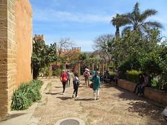 Rabat kasbah des Oudaya_0609 (JespervdBerg) Tags: holiday spring 2016 africa northafrican tamazight amazigh arab arabic moroccanstyle moroccan morocco maroc marocain marokkaans marokko rabat qasbah kasbah qasba oudayas oudaias