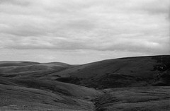 Pennine Way day two - Windy Gyle to Byrness (ronet) Tags: pentaxmz5n bw blackandwhite bothy diydeveloped film homedeveloped ilford ilfordfp4 ilfotecddx northumberland pennineway utata