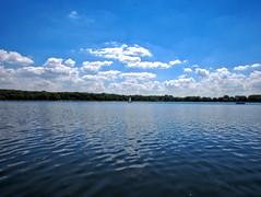 Een mooie zomerdag bij de plas. (michieljacker) Tags: rotterdam rotjeknor kralingseplas water park lake boot sailing deschonelei pier dok