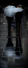 [ Giorni grigi - Gray days ] DSC_0548.4.jinkoll (jinkoll) Tags: grey gray umbrella silhouette rain raining passing passingby walk walking steps square wien reflections water couple city bokeh dof
