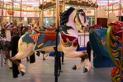 Coney Island's Historic B&B Carousell (Kim Lofgren Photography) Tags: nyc carnival 1920s horse newyork brooklyn vintage coneyisland ride landmark carousel historic boardwalk amusementpark americana lunapark 1906 merrygoround carouselhorse bbcarousell charlescarmel