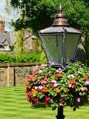 Aston Rowant, Oxfordshire (Oxfordshire Churches) Tags: astonrowant oxfordshire panasonic lumixgh3 mft microfourthirds micro43 england uk unitedkingdom johnward gardens gardening flowers peverilhouse lamps gaslamp londonlamp streetlights