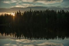 Presque nuit (Samuel Raison) Tags: lake nature finland landscape lac paysage finlande jarvi tourbire