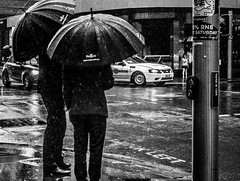 Sydney Suits in the Rain (TOXTETH L8) Tags: rain sydney sydneycbd businessmen crossing road streets suits traffic umbrellas