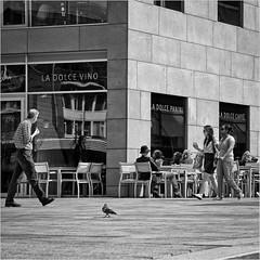 Dolce (John Riper) Tags: johnriper street photography straatfotografie rotterdam square bw black white zwartwit mono monochrome netherlands candid john riper canon 6d 24105 l people hoogstraat markthal dolce dove pigeon vino caffe panini restaurant reflection summer terrace