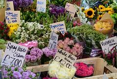 Flowers for Sale (pjpink) Tags: flowers sale vendor portobello market portobellomarket nottinghill london england britain uk may 2016 spring pjpink colorful