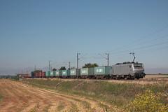 BB 27168 VFLI / Bissezeele (jObiwannn) Tags: train fret ferroviaire locomotive prima