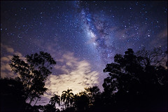 Iquitos Jungle 2Lres (Dave Kehs) Tags: iquitos night longexposure oneshot milkyway stars clouds trees jungle dave kehs bingham blue purple cool space astrophotography galaxy lightroom canon 5d 1635