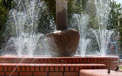 three sparrows fountain (kexi) Tags: three 3 sparrows birds fountain water jastrzebiagora poland canon june 2015 bricks instantfave