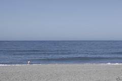 Achicando. (elojeador) Tags: mar térmica playadelatérmica arena horizonte chica mujer bañista pisada onda ola parasubsistir elojeador