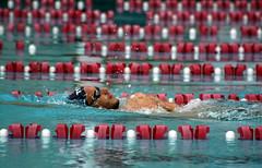 French swimmer (Clara Ungaretti) Tags: swimming swimsuit swimmer swim swimmingpool pool portoalegre brasil brazil french olympicgames olimpadas olympics olympic rio2016 training sportwear sport sportphotography action