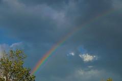 Rainbow (Kerryjwagner) Tags: rainbow shower clouds sky