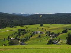 green and white (Paramedix) Tags: schwarzwald blackforest mountains berge germany deutschland badenwrttemberg landscape landschaft nature natur olympus em5 mft schauinsland alpen