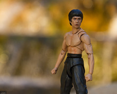 Bruce Lee (MadMartigen) Tags: brucelee shfiguarts actionfigure toy kungfu bandai