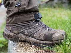 P8060488 (Cardinal Guzman) Tags: 2016 norway norwegiannature trolltunga hiking shoes sko sommer summer trekking preikestolenkjeragboltentrolltungatrip boots hikingboots muddyboots muddy