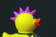 Badeente mit Irokesenschnitt (ingrid eulenfan) Tags: pink 50mm duck 5 five frisur gelb hmm iro irokesenschnitt festbrennweite badeente macromondays sonyalpha65 iroente