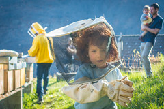 The small beekeepers grow (mbeo) Tags: child bees honey protection miele api beekeeping apicultura bambino protezione mergoscia mbeo