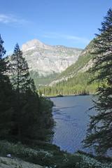 le lac de Derborence (luka116) Tags: montagne suisse paysage juillet valais 2016 derborence