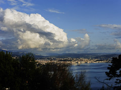 trieste da contovello (violica) Tags: italy panorama clouds italia nuvole karst trieste carso triest trst friuliveneziagiulia kontovel contovello
