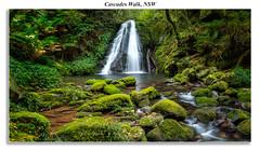 Cascades Walk-Pano (John A Hunt Photography) Tags: waterfall sony au australia nsw newsouthwales ebor comara visitnsw