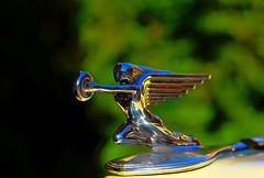 Specially Crafted (KC Mike D.) Tags: bell packard ornament hood car classic automobile design reflection shine bokeh crafted
