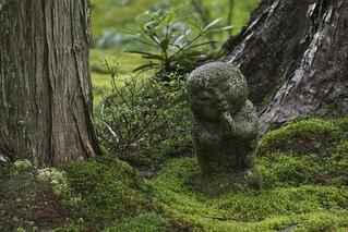 Moss Jizo わらべ地蔵