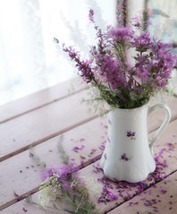 wild and free (s@ssyl@ssy) Tags: vintage antique treasure jug vase free wild flowers wildflowers purple pink 52x52 52by52 windowlight inmyshedofcourse