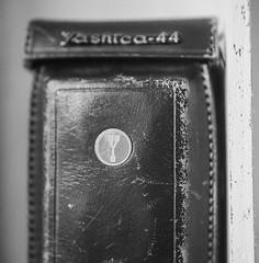 (laura_rivera) Tags: film yashicamat124g yashica44 yashica filmcamera 120film tmax tmax400 kodak laurarivera mediumformat 4 closeup closeuplens 6x6