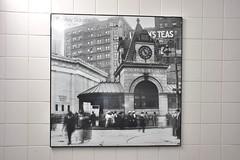 DSC_1528 (billonthehill2001) Tags: boston subway mbta governmentcenter greenline blueline