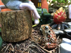 With News (Foxy Belle) Tags: mouse camping woods soldier story scene miniature dollhouse 112 gi joe tent ceramic toad critters